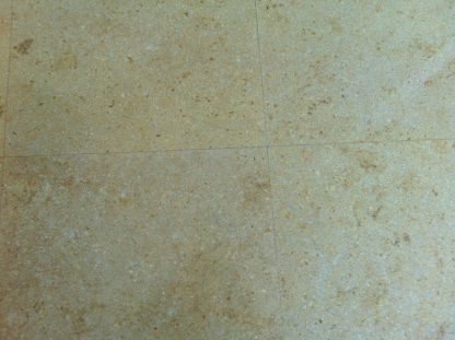 Titian Limestone Honed, Seashell, Salem Gold