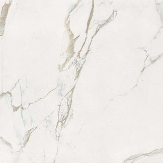 Calacatta S Polished Porcelain 60 x 60